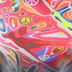 ZAOSU Wettkampf Schwimmanzug Z-Peace – Bild 4